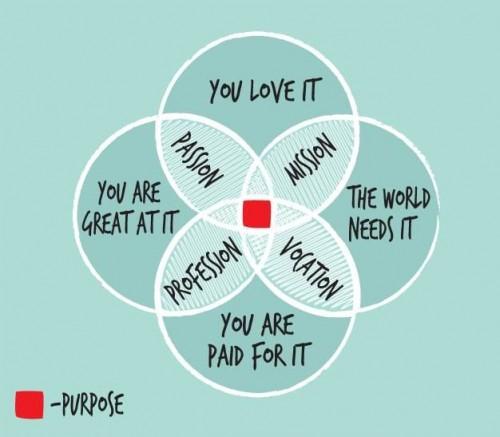 Hulpmiddel om jouw passie te vinden