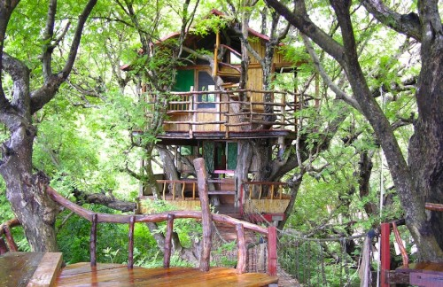 Treetop Hotels Sanya