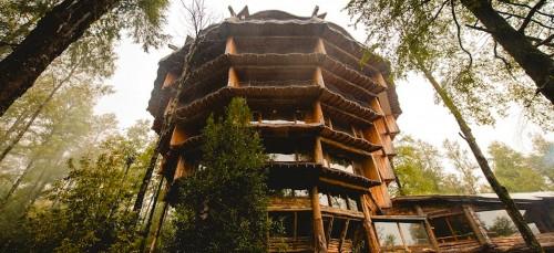 De 8 mooiste Treetop Hotels ter wereld