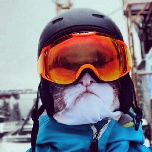 Wintersporters opgelet: er is een nieuwe trend gaande
