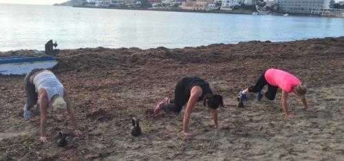 The Workout Club: fitness- en motivatietips vanaf het zonnige ...