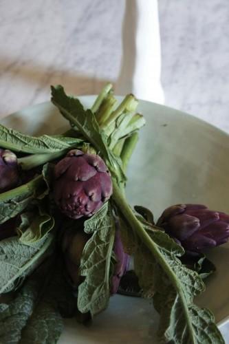 artichoke-