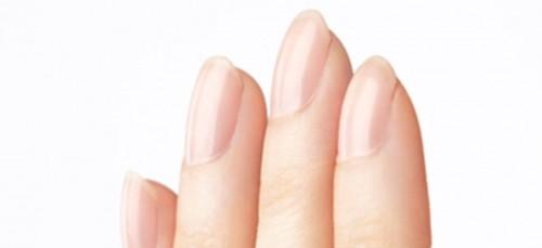 Een lange ringvinger wijst op een top job