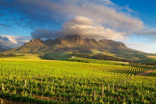 Beste-Wijnstreken-Kaapstad