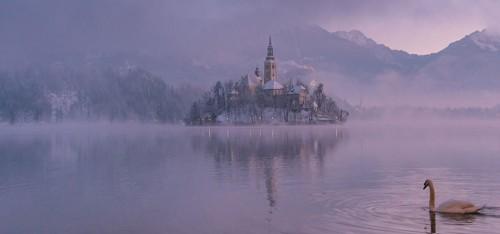 Het Meer van Bled is een levensecht wintersprookje