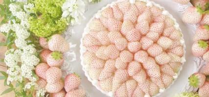 OMG deze witte (!) aardbeientaart is te zoet voor woorden
