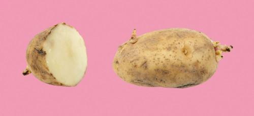Wat gebeurt er als je een jaar lang alleen maar aardappels eet?