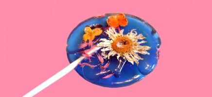Lollies met eetbare bloemen