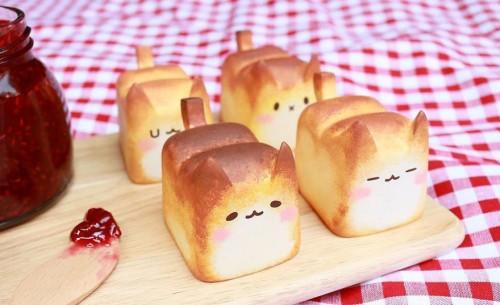 kattenbrood
