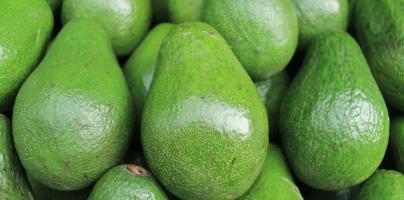 Dit is waarom je nú moet stoppen met avocado's eten