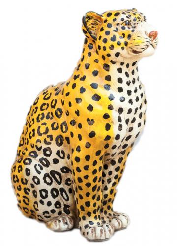 leopard beeld