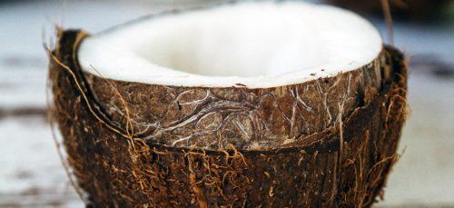 Nooo! Er is een kokosnoot tekort op komst