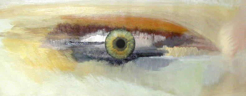 De pijnappelklier: ook wel het derde oog genoemd, is de zetel ...