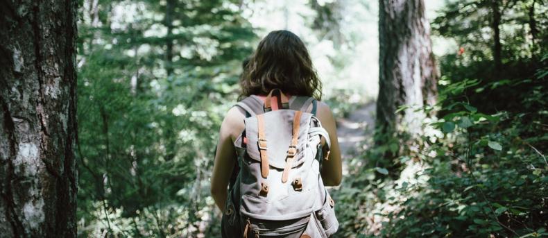 Zo verandert een wandeling in de natuur je brein