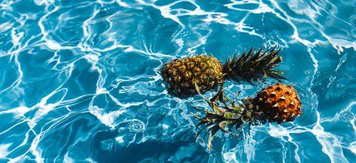 Leuk en effectief tegen de snurkende partner deze ananasplant