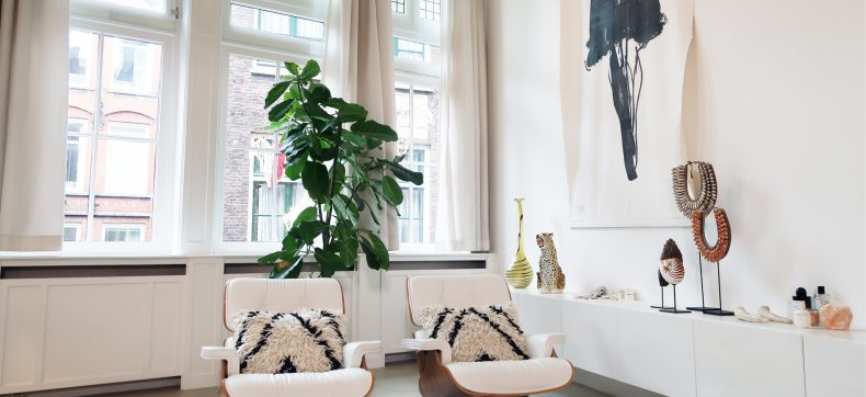 Deze 5 grote planten wil je in huis
