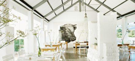 Restaurant Babel in Stellenbosch