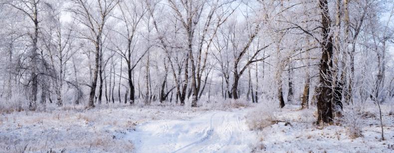 Van sporten in de winter val je sneller af