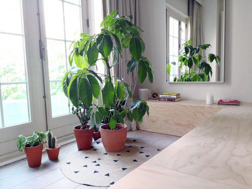 Sonos bedroom