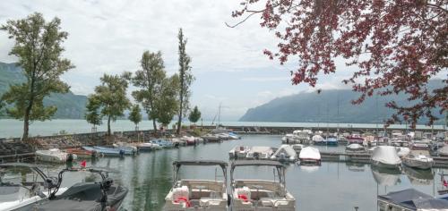 Savoie Mont Blanc: wijn & kastelen