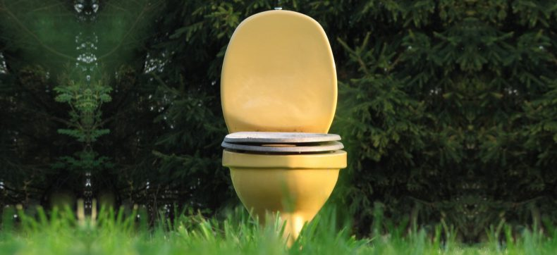 Deze Japanse gewoonte op het toilet is zo gek nog niet