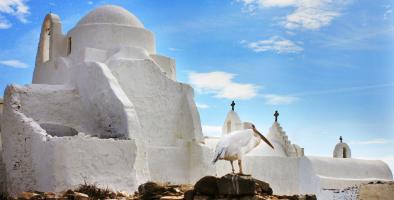 Enfait's best of: de Griekse eilanden