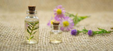 Physalis essentiële oliën: de juiste geur voor de juiste mood