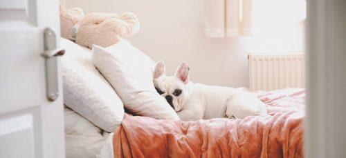 Slapen met de verwarming aan? Doe maar niet!