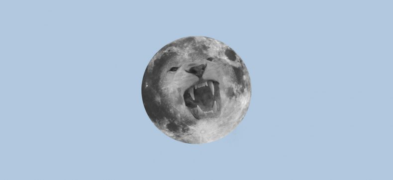 De volle maan in leeuw brengt energie, moed en passie