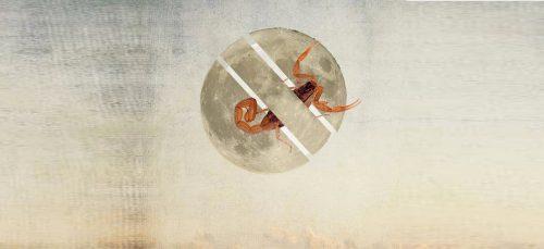 7 mei: Volle Maan in Schorpioen