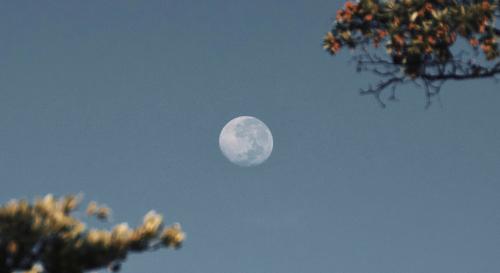 Slecht geslapen? De volle maan van 5 juni had sterke krachten