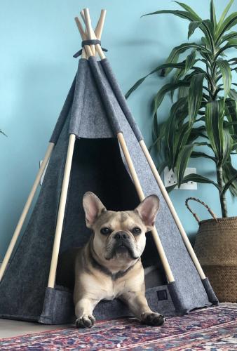MADE.com huisdierencollectie