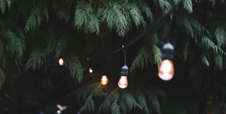 Sfeer in je tuin doormiddel van tuinverlichting