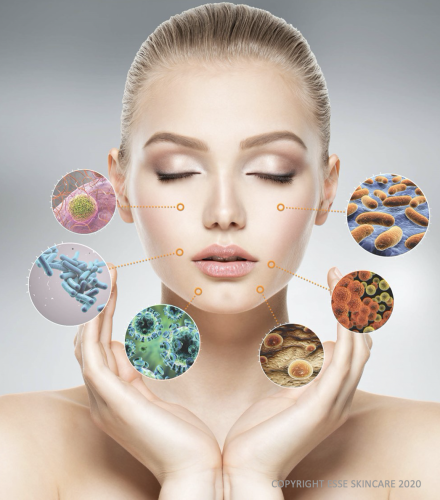 huidmicrobioom in balans